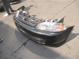 Nose cut Honda Civic Ferio Владивосток
