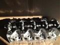 Головка блока цилиндров для Toyota Town Ace Van