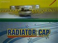 Крышка радиатора для Nissan Bassara