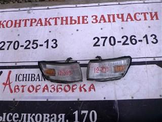 Габарит Toyota Carib Владивосток