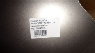 Nose cut Honda Avancier Новосибирск