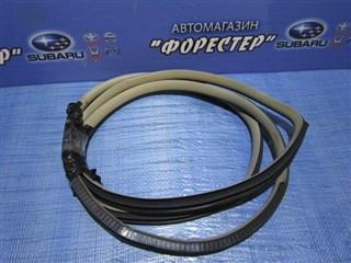 Уплотнение дверное Nissan Tiida Latio Владивосток