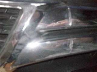 Решетка бамперная Honda Fit Shuttle Уссурийск