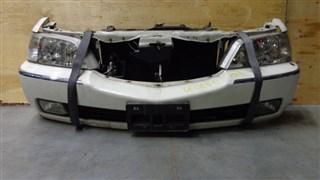 Nose cut Honda Legend Новосибирск