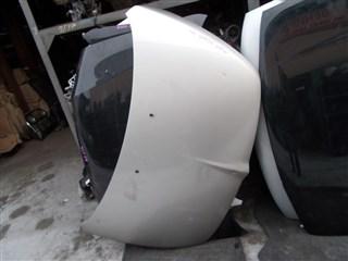 Капот Mitsubishi Grandis Владивосток