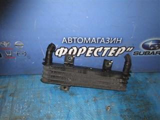Радиатор масляный Nissan Cima Владивосток