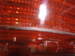 Отражатель бампера Lexus RX350 Владивосток