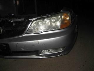 Nose cut Honda Saber Новосибирск