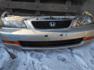 Nose cut Honda Saber Владивосток