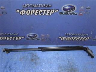 Амортизатор задней двери Nissan Note Владивосток