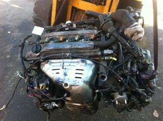 Двигатель Toyota Ipsum Sport Благовещенск