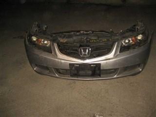Nose cut Honda Accord Новосибирск
