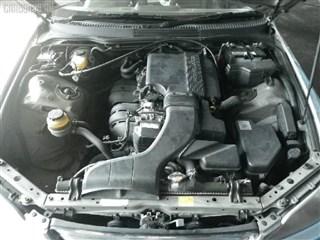 Стойка Lexus IS300 Владивосток
