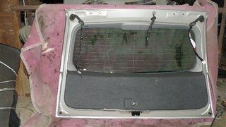 Дверь задняя Toyota Opa Владивосток